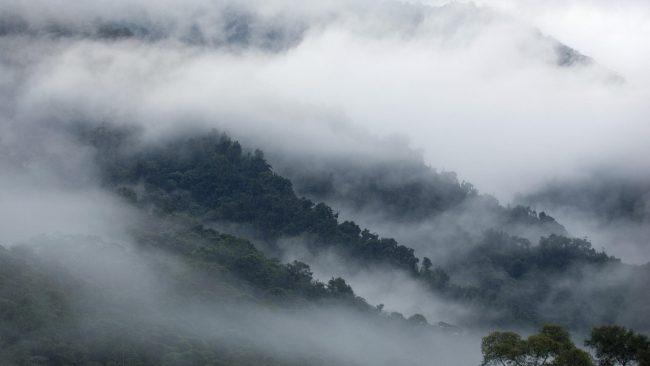 Фото - «Туманные» хранилища могут стать безопасной альтернативой «облачным»
