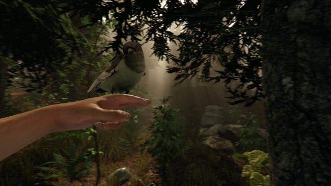 Фото - Игра The Forest для Oculus Rift научит вас выживать в лесу