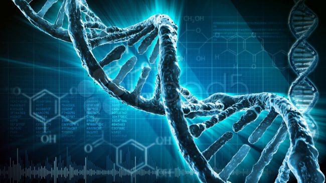 Фото - Разработаны ДНК-нанопроводники, которые могут быть использованы в создании генетических компьютеров